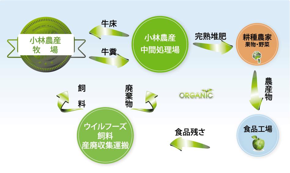 循環型システム略図
